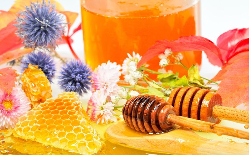 A méhpempő kiemelkedő hatékonysággal erősíti meg az immunrendszert